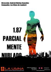 1.87 Parcialmente Nublado